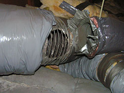 Rats can chew holes in home air ducts. Air conditioning service and Heating service.